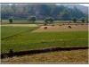 birmanie-20110414-161311