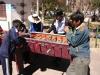 bolivia-chile-20090816-105911