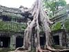 Angkor-20100823-043