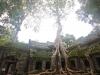 Angkor-20100823-044