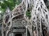 Angkor-20100823-047