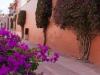 mexique-20120423-170130