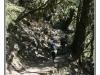 nepaljack-20110308-094551