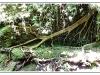 sans-titre-20110621-40