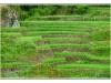 indonesie-20110511-150719