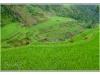indonesie-20110511-151642
