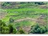 indonesie-20110512-112330