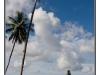 indonesie-20110805-210928-1