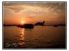 birmanie-20110404-180009