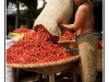 birmanie-20110407-101900