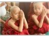 birmanie-20110410-164110