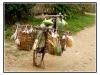 birmanie-20110411-161627