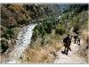 nepaljack-20110307-100557