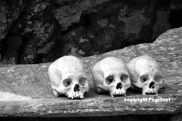 Les ossements sont exposes