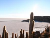 Panorama depuis l'Isla Incahuasi
