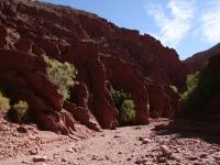 Balade dans les canyons de Tupiza